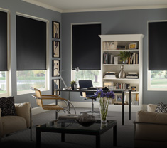 window-treatments ROLLER SHADES