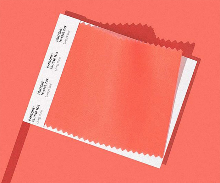 Living Coral is Pantone's 2019 Color of the Year – Are You a Fan?